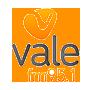 Radio Vale 95.1 FM